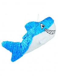 Pignatta squalo