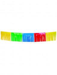 Ghirlanda a frange multicolore 10 metri