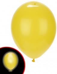 5 palloncini LED gialli Illooms™