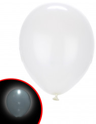 5 palloncini LED bianchi Illooms™