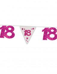 Ghirlanda 18 anni bandierine rosa