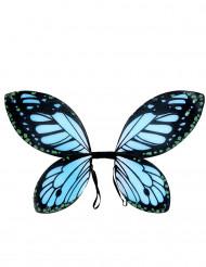 Ali di farfalla nero e blu per bambina