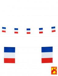 Ghirlanda bandierine francesi