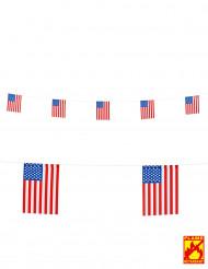 Ghirlanda di bandierine USA