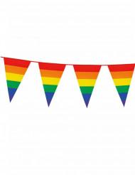 Ghirlanda di bandierine arcobaleno 8 m