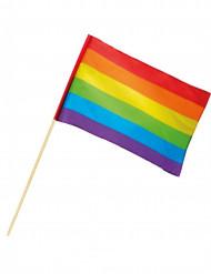Bandiera arcobaleno 30 x 45 cm