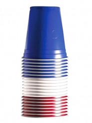 20 Bicchieri Francia 53 cl