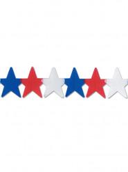Ghirlanda di stelle USA