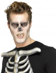 Finti denti da scheletroper adulti