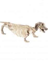 Decorazione a sospensione per halloween cane scheletro