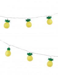 Ghirlanda luminosa ananas