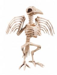 Scheletro di corvo decorativo 32 cm halloween