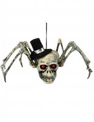Teschio ragno decorativo con cappello halloween