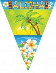 Ghirlanda con festoni Aloha 5 mt
