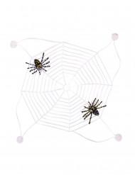 Tela di ragno forforescente