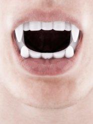 Image of Dentiera da vampiro bianca Halloween