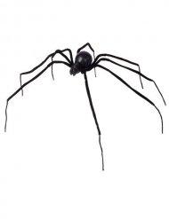 Ragno nero 110 cm halloween
