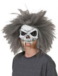Image of Maschera teschio vampiro con capelli grigi halloween