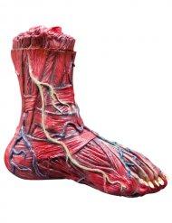 Decorazione piede scorticato 25x7x23 cm