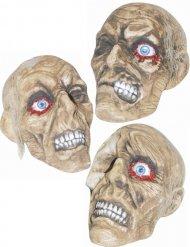 Decorazione cranio mummificato