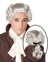 Parrucca grigia da nobile barocco per uomo