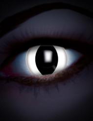 Lenti a contatto UV rettile bianco per adulto