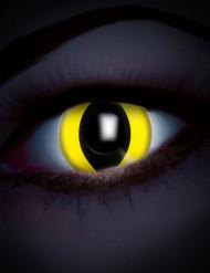 Lenti a contattofantasia colorate gialle con pupilla nera