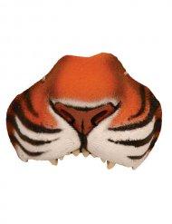 Naso da tigre