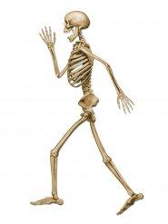 Decorazione scheletro in camminata Halloween 94 cm
