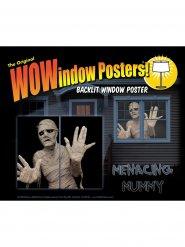 Adesivo per finestra mummia 2 Pezzi 91 x 152 cm