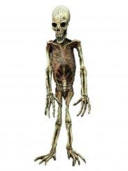 Decorazione scheletro mostruoso - Halloween