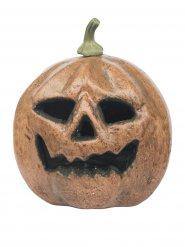 Zucca spaventosa di halloween luminosa