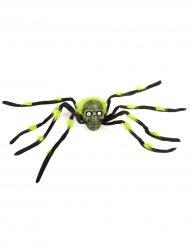 Decorazione per Halloween Ragno gigante con teschio
