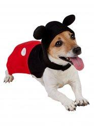 Costume per cani da Topolino™