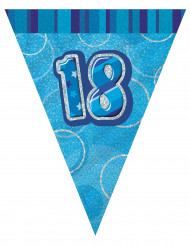 Ghirlanda con bandiere 18 anni blu