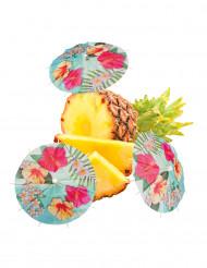 6 Ombrellini da cocktail Hawaii party