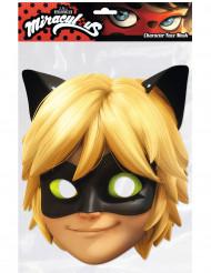 Maschera cartone Chat Noir™ Miraculous Ladybug™