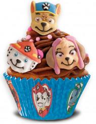 9 decorazioni di zucchero per dolci Paw Patrol™