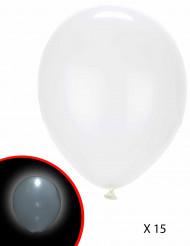 15 palloncini led bianchi illoms™