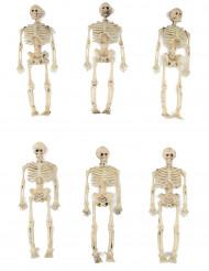 Decorazione per Halloween 6 scheletri 15 cm