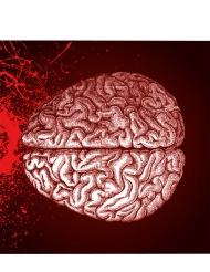20 Tovaglioli con cervello umano Halloween
