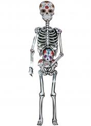 Decorazione per Halloween Scheletro Dia de los muertos