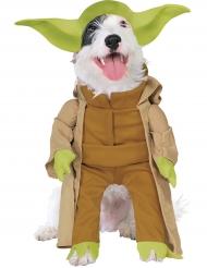 Costume per cane Maestro Yoda™