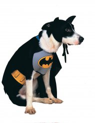 Costume per cane Batman™