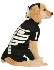 Costume per cani da scheletro fosforescente