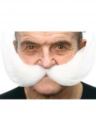Enormi baffi bianchi per adulto