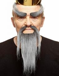 Kit baffi cinesi, barba e sopracciglia grigie