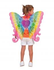 Ali farfalla multicolori