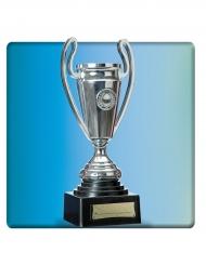 Trofeo argentato coppa 24 cm