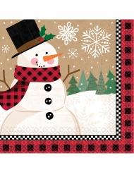 16 tovaglioli di carta Babbo Natale 33 x 33 cm